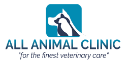 All Animal Clinic Key West for the finest veterinary care