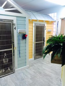 Abigail & Stitch Pet Resort, dog boarding and day care in Key West
