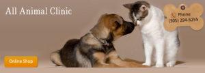 All Animal Clinic Key West Veterinary Hospital Services