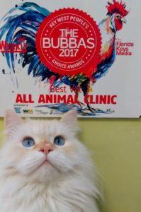 Meet our Mascot The Donald Bubba Award Winner