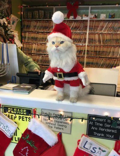 Meet our Mascot The Donald as Santa